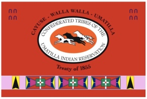 Confederated Tribe Flag